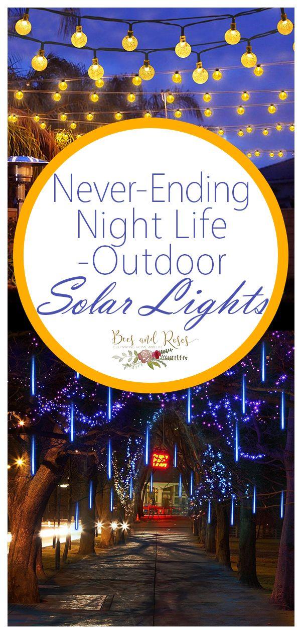 Never Ending Night Life Outdoor Solar Lights Bees And Roses Outdoor Solar Lights Solar Lights Solar Lights Garden