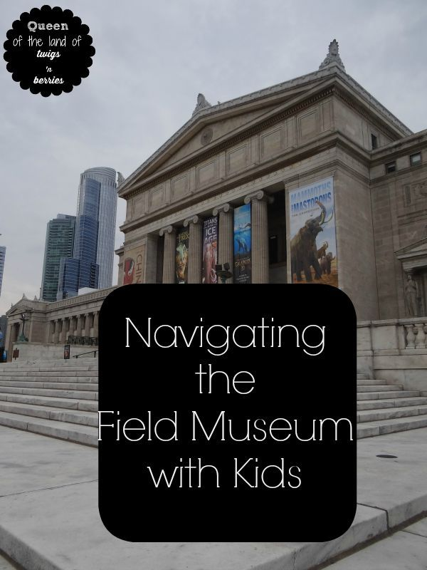 Tips for navigating Chicago's Field Museum with kids / found on www.queenofthelandoftwigsnberries.com