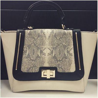 Ash 'n Chang: Aldo | Handbag