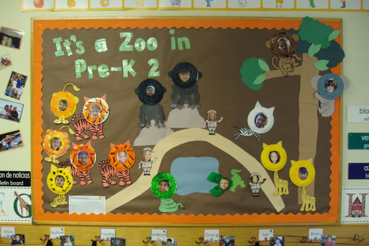 Classroom Zoo Ideas ~ Best images about bulletin boards on pinterest jungle