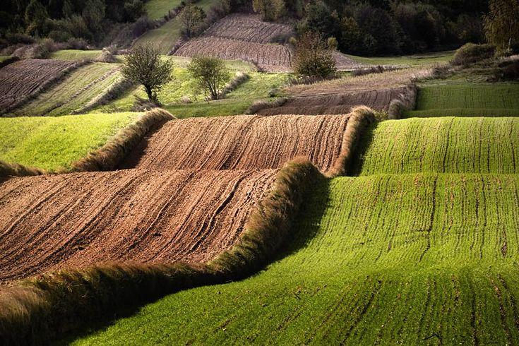 krajobraz Roztocza, Polska, inspirujące ukształtowanie terenu