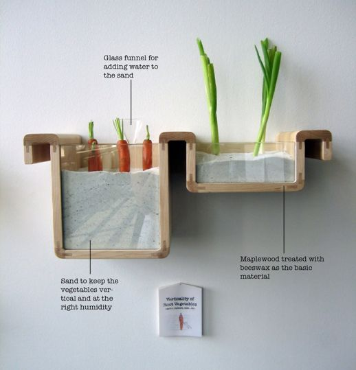 Innovative way to store food - We tend to store carrots horizontally, but root vegetables fare better in their vertical state. This provides upright storage in sand, which emits the proper humidity