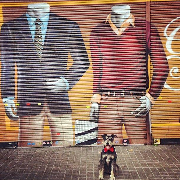 Maravillosos cierres de escaparate en Sant Antoni, Barcelona.