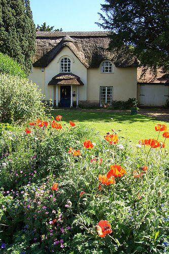 Cottage at Wool, Dorset