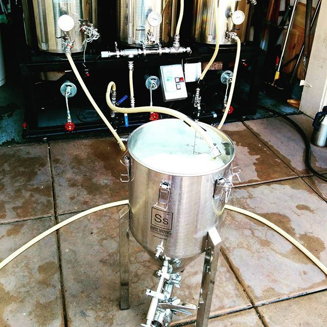 Transferring the homebrew to the fermenter #homebrew #homebrewing #homebrewer…