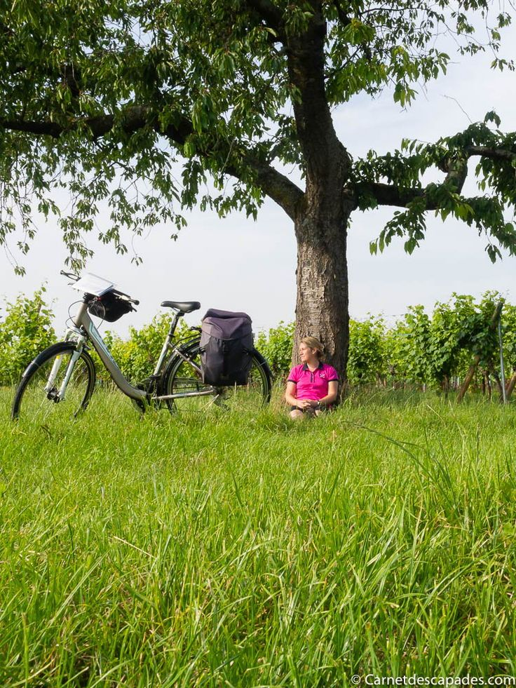 31 best Voyages à vélo images on Pinterest Families, Places to