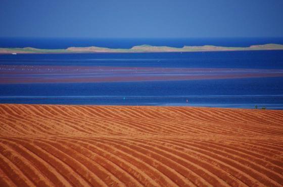 Aux couleurs de l' Isle by MONIN Marie-Claire