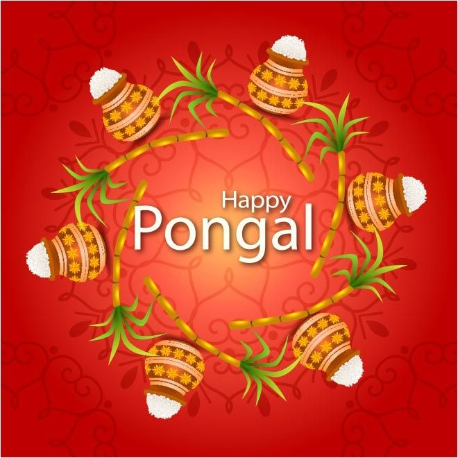free vector Celebration of South Indian festival Happy Pongal Day http://www.cgvector.com/free-vector-celebration-south-indian-festival-happy-pongal-day-5/ #Agriculture, #Asian, #Background, #Banana, #Banner, #Card, #Celebration, #Celebrations, #Clebration, #Coconut, #Colorful, #Concept, #Cow, #Creative, #Creativity, #Culture, #Day, #Decoration, #Design, #Editable, #Ethnic, #Farm, #Farmer, #Festival, #Floral, #Flower, #Food, #Fruit, #Grain, #Greeting, #Happy, #Harvest, #Har