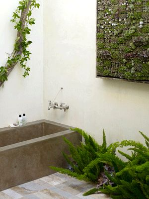 stone bathtub and green wall design with house plants