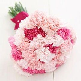 Send Carnations Online