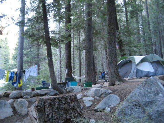 Lodgepole Campground - Sequoia National Park