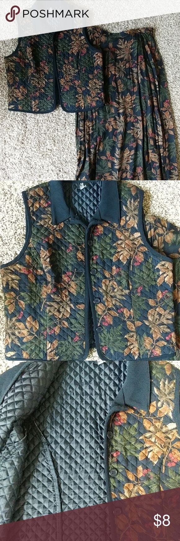 Gorgeous fall vest/ skirt set Beautiful fall colors and pattern adorn this set. 100% rayon size 12 petite, vest is quilted button up, skirt has back zipper side elastic panels, with slit, not lined. Hand wash instructions. Ali Miles Skirts Skirt Sets