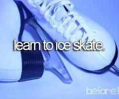 Bucket list - or regular skate