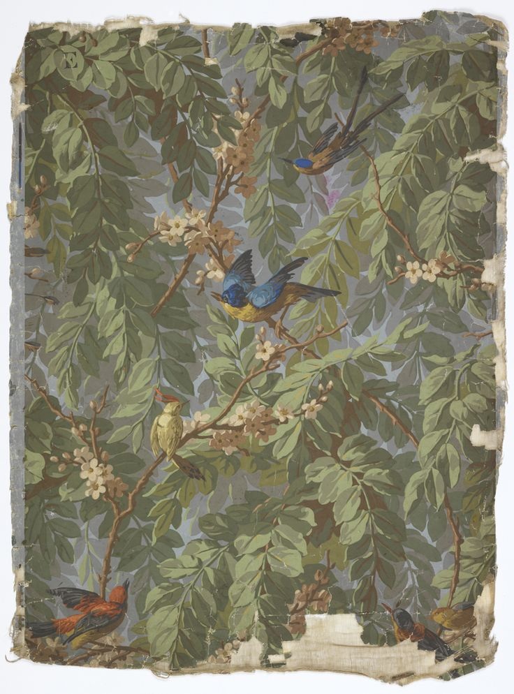 French wallpaper, 1900-15