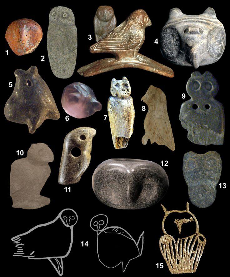 Fifteen prehistoric owl images.