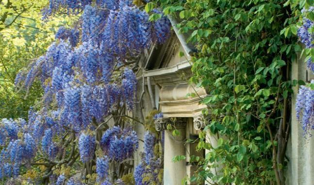 Cotswold English Garden design ideas ~ English garden