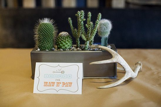 Totally cute! Tennessee / Country theme. Succulents (love), and cute!   Rustic Texas Baby Shower
