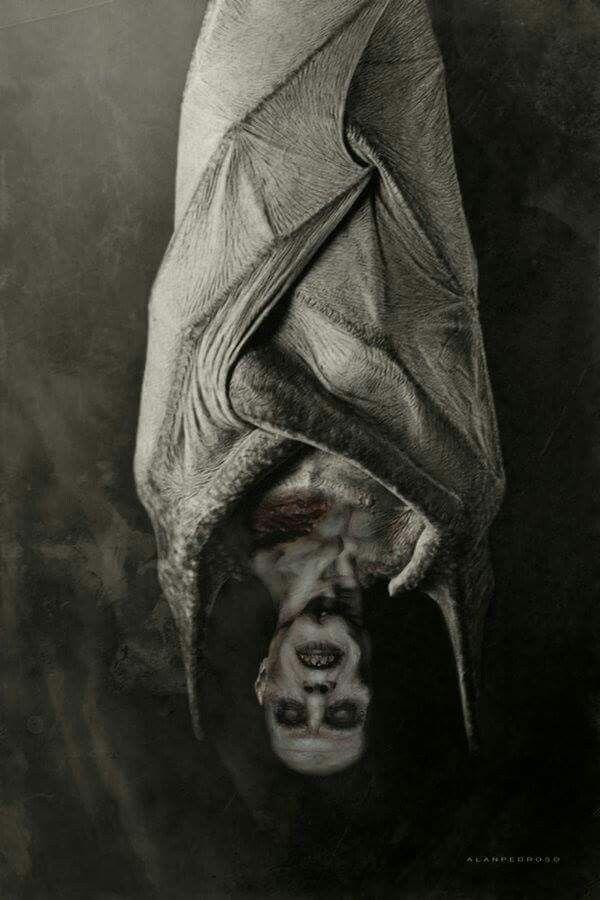 #Nosferatu #TheVampyre                                                                                                                                                                                 Más