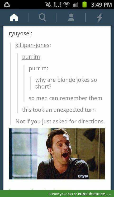 Dumb Blonde Joke Stories