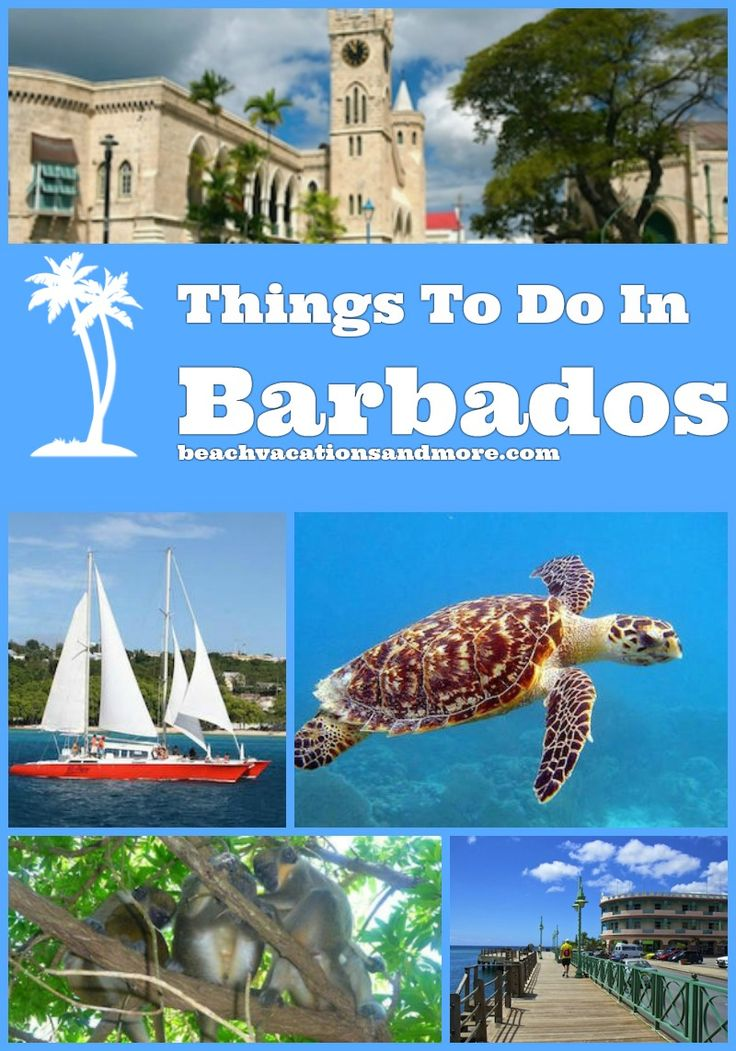 Top things to do in Barbados & Bridgetown include - Scuba Diving, Snorkeling, Atlantis Submarine, cruises, tours in Barbados and other activities