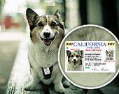 Unique dog tag - Custom dog tag - Pet tag - Dog tag - Cat tag - Personalized ID tag - CA Drivers License