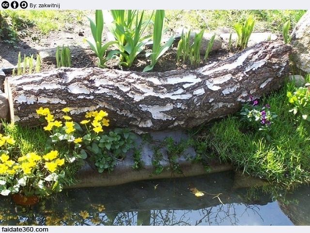 Pi di 25 fantastiche idee su laghetti da giardino su for Laghetti artificiali da giardino
