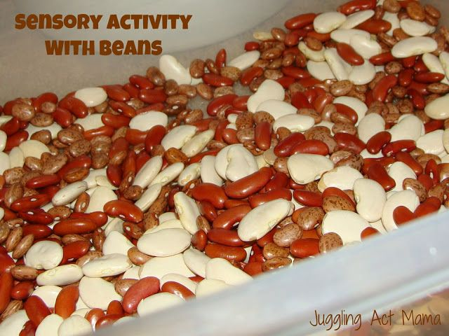 Sensory Activity with BeansKids Playrooms, Sensory Activities, Juggling, Autism Ideas, Beans, S Sensory, Sensory Stuff, Sensory Fun, Sensory Ideas