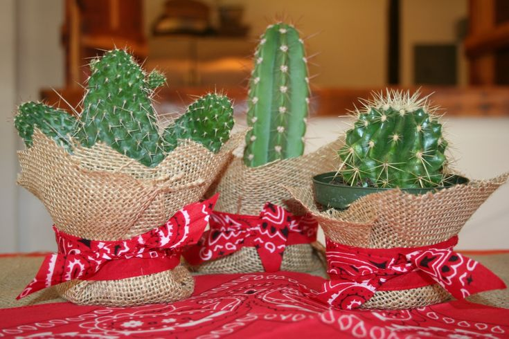 Cowgirl / Cowboy Party cacti centerpiece cute...but maybe dangerous with kids!