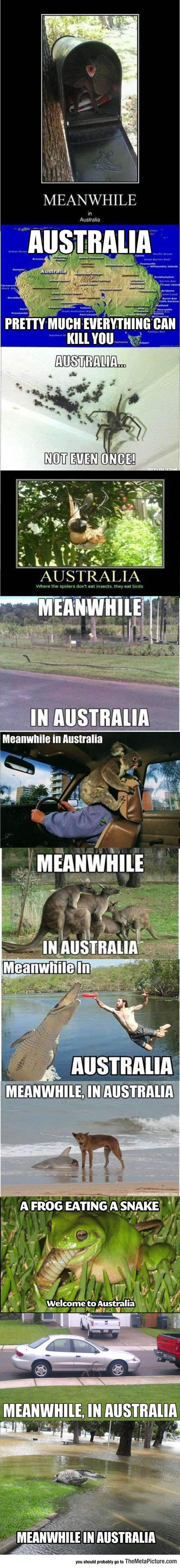 I live in Australia and I can confirm that this is all true but you forgot the summers and  swooping season
