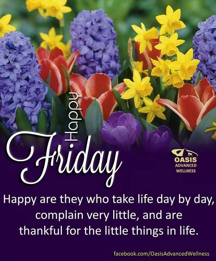 Happy friday my days pinterest happy friday blessings my days pinterest happy friday blessings and weekday quotes m4hsunfo