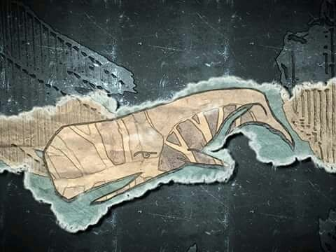 balena illustrazione di cristiano schiavolini