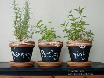The Robins Nest: Chalkboard Clay Pots...