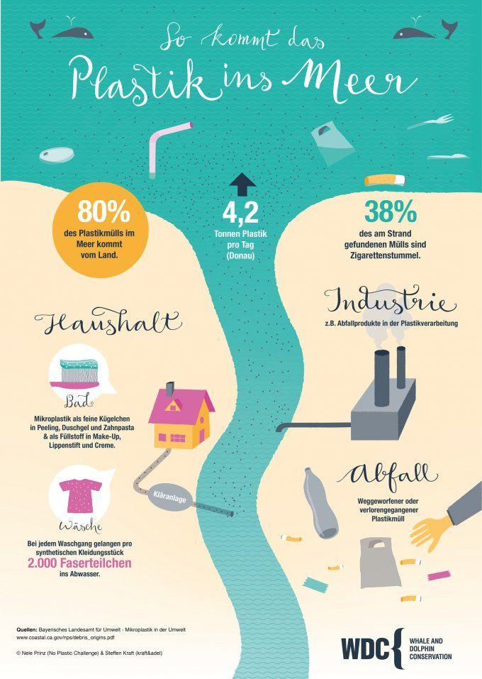 Wie gelangt das Plastik ins Meer? Infografik von WDC / Nele Prinz und Steffen Kraft