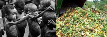 hambruna y pobreza en el mundo