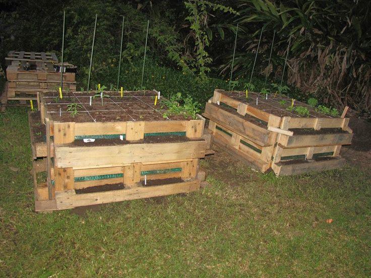 Potager carr de nouvelle cal donie en palette bois for Entretien jardin noumea