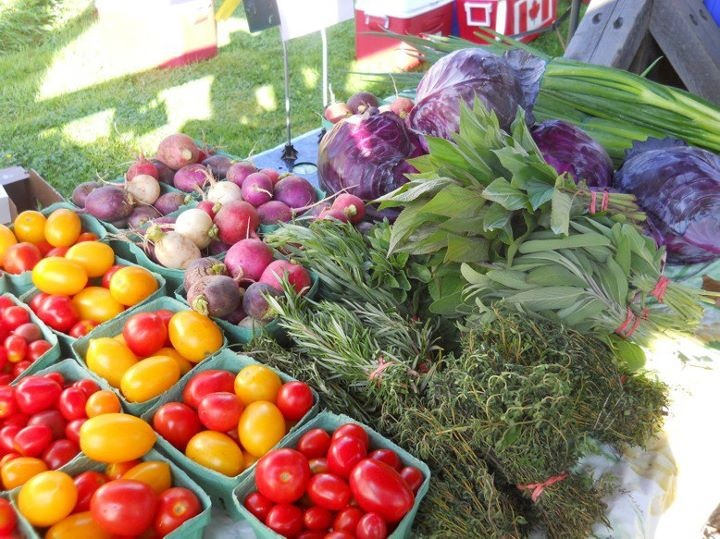 Colourful produce | Hubbards Farmers' Market