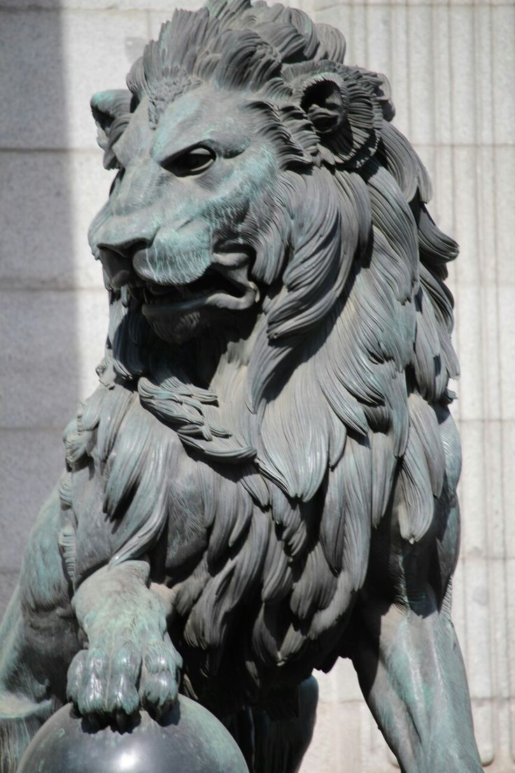 Leones. Palacio de Las Cortes. Foto: Nacho Guilló