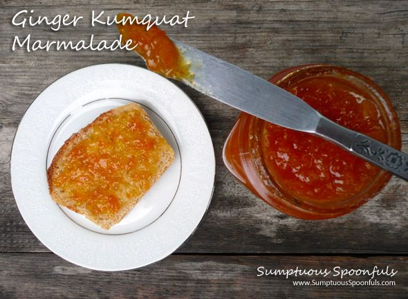 Super Easy Ginger Kumquat Marmalade ~ Make in the microwave! - Might want to use a sugar substitute!