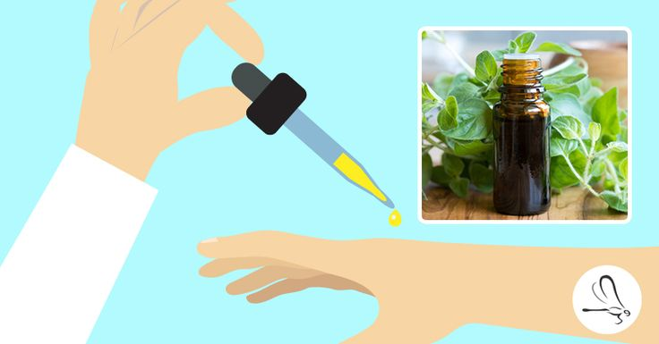 Everything you need to know about oregano oil uses, oregano oil benefits, how to make and how to take oregano oil, the powerful natural antibiotic.