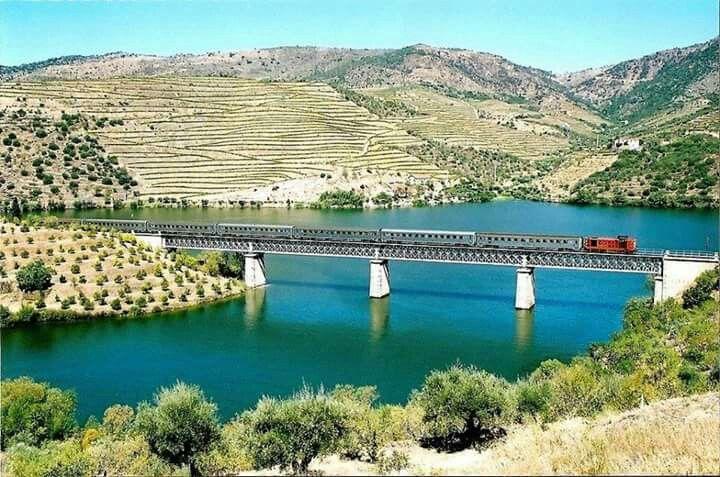 Ponte de Arnozelo - Douro