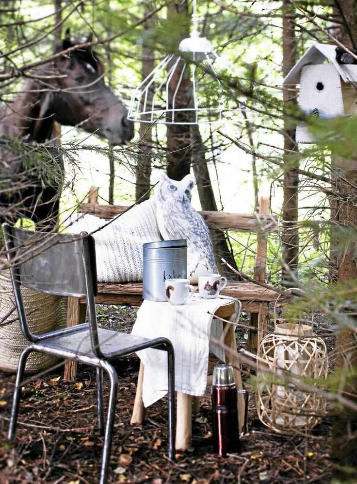#nordic #style Nice horse. NORDISK NATUR: Fang stemningen fra de dype norske skoger. Jernstolen Tolix Vintage, håndlaget fuglehus i stoff, strikket bomullspute, uglepute fra Salvor Fauna i bomull, kakeboks i stål, krus med ekornmotiv, løper i bomull, alt fra Bolina. Lampen Wire i hvitlakkertstål, lykt i bambus, begge fra Verket Intriør. Stylistens hest Vallemøy i bakgrunnen.