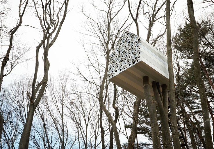 Bird Tree Appartment Tiny Houses Pinterest Bird Tree Interiors Inside Ideas Interiors design about Everything [magnanprojects.com]