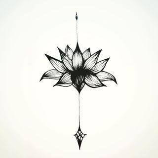 """Résultat de recherche d'images pour """"arrow lotus flower"""""""