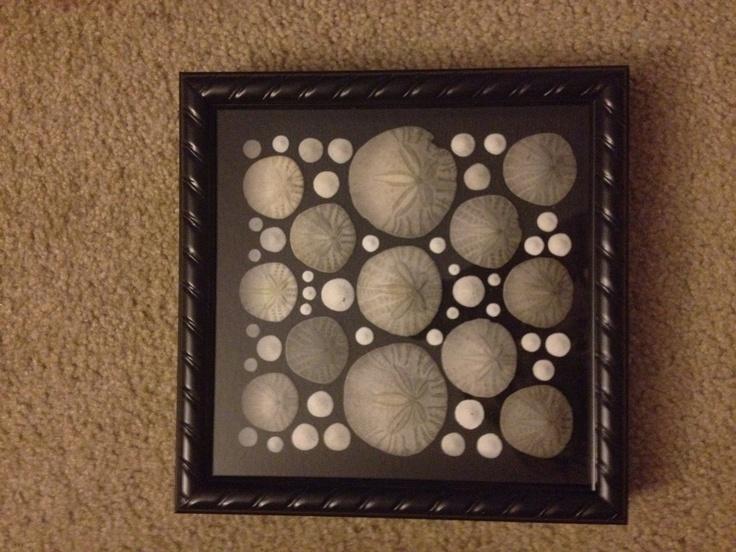 Ribboned Framed Sand-dollar Art. $30.00, via Etsy.