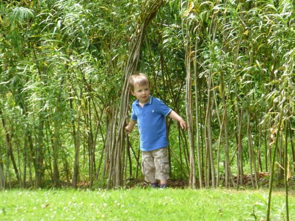 through the tunnel http://bubbablueandme.com/2014/07/annual-pass-at-compton-verney/ a willow tunnel in a meadow
