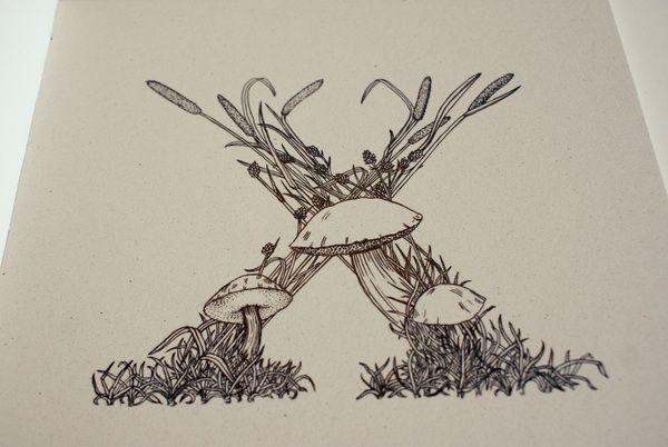 x - xerocomus subtomentosus - suade bolete - ugluhot | owl hill - stella bjorg - 2012