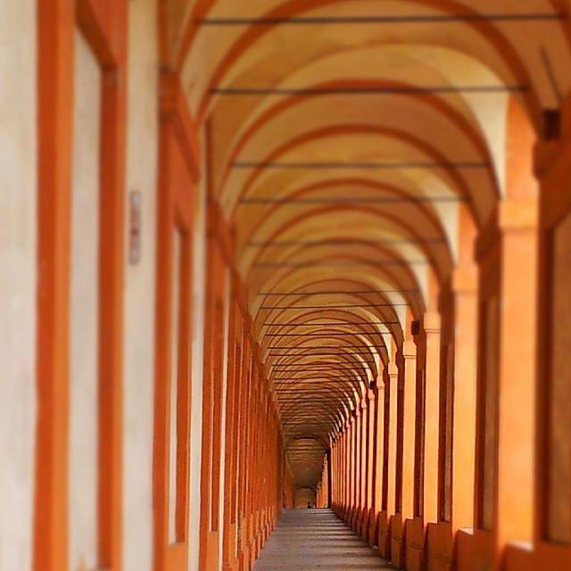 Oggi pomeriggio sono entrata in quello che per me è una sorta di visione caleidoscopica: i portici di San Luca. Sono i portici più lunghi al mondo!