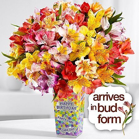 Introducing Happy Born Day  Same Day Birthday Flowers Delivery  Online Birthday Gifts  Birthday Present Ideas  Happy Birthday Flowers  Birthday Party Ideas. Great Product and follow us to get more updates!