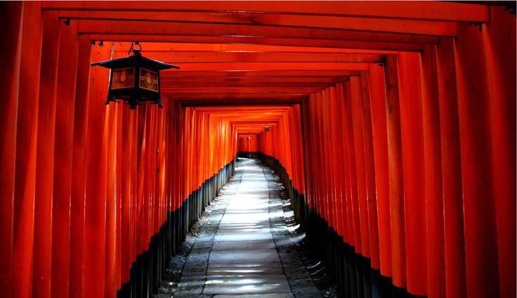 Risultati immagini per torii kyoto