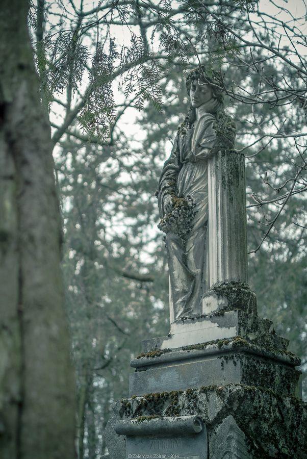 Central cemetery Cluj-Napoca